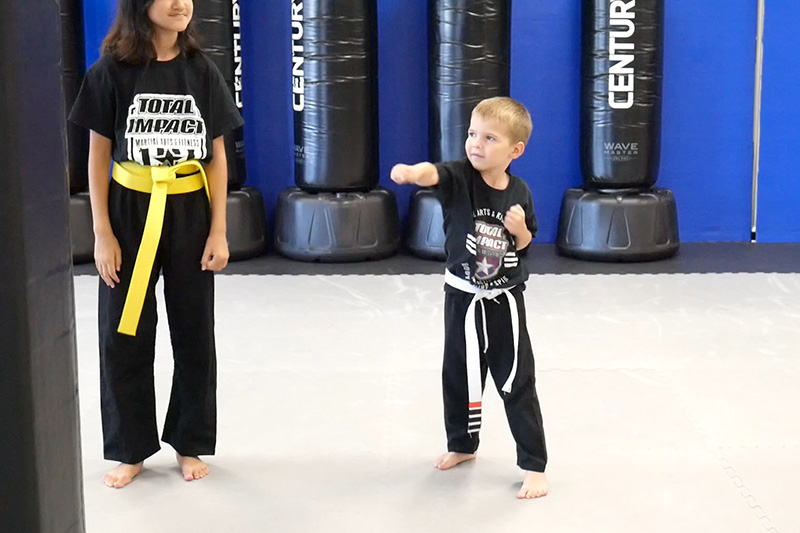 Total Impact Martial Arts - Arlington Heights - Kid's Martial Arts - Children's Karate - Little Ninjas